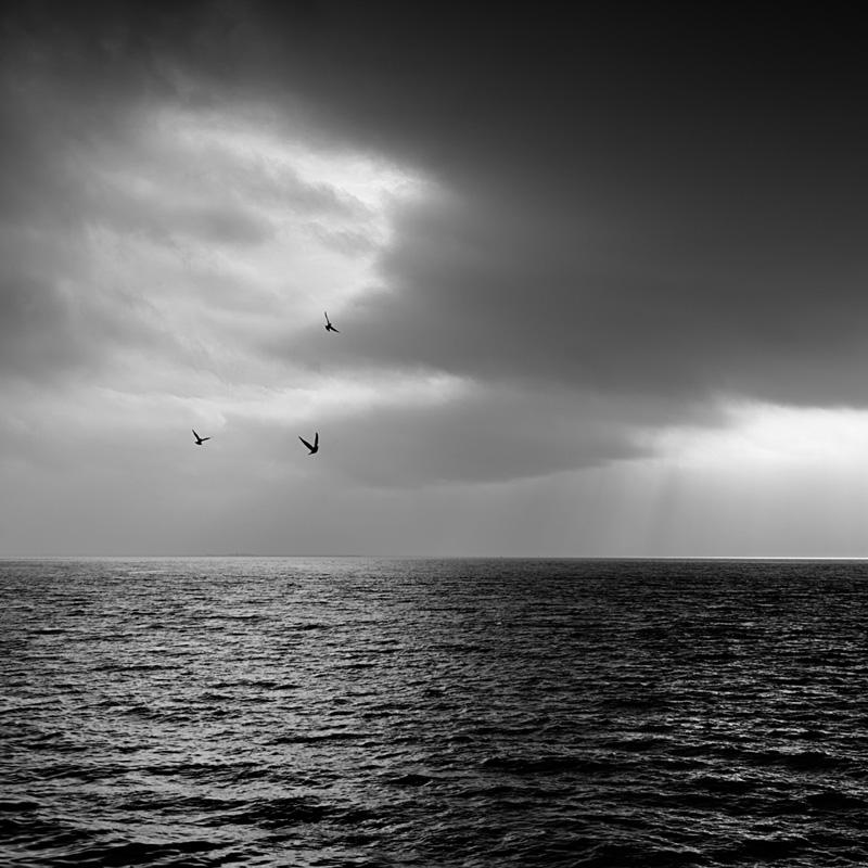 John Mee Photography