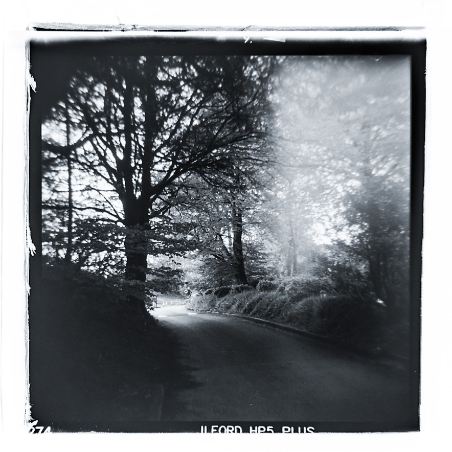Black and white photo from the Holga film camera